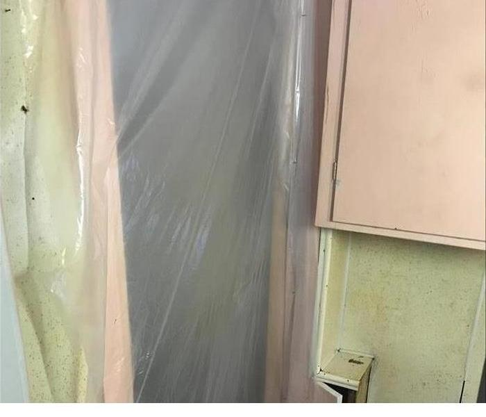 Mold Remediation What Does Mold Containment and Remediation Involve?