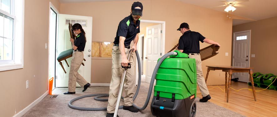 Reading, PA cleaning services